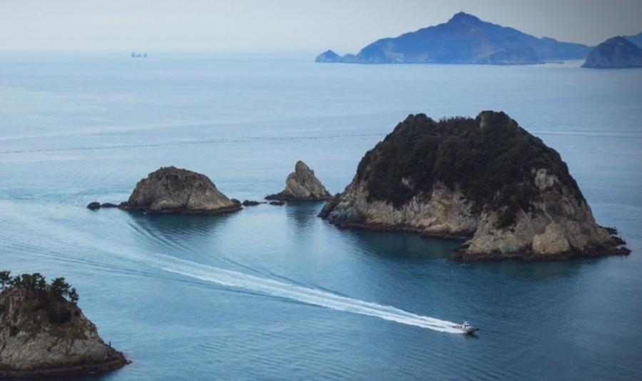 바다의 신선함을 선물합니다.